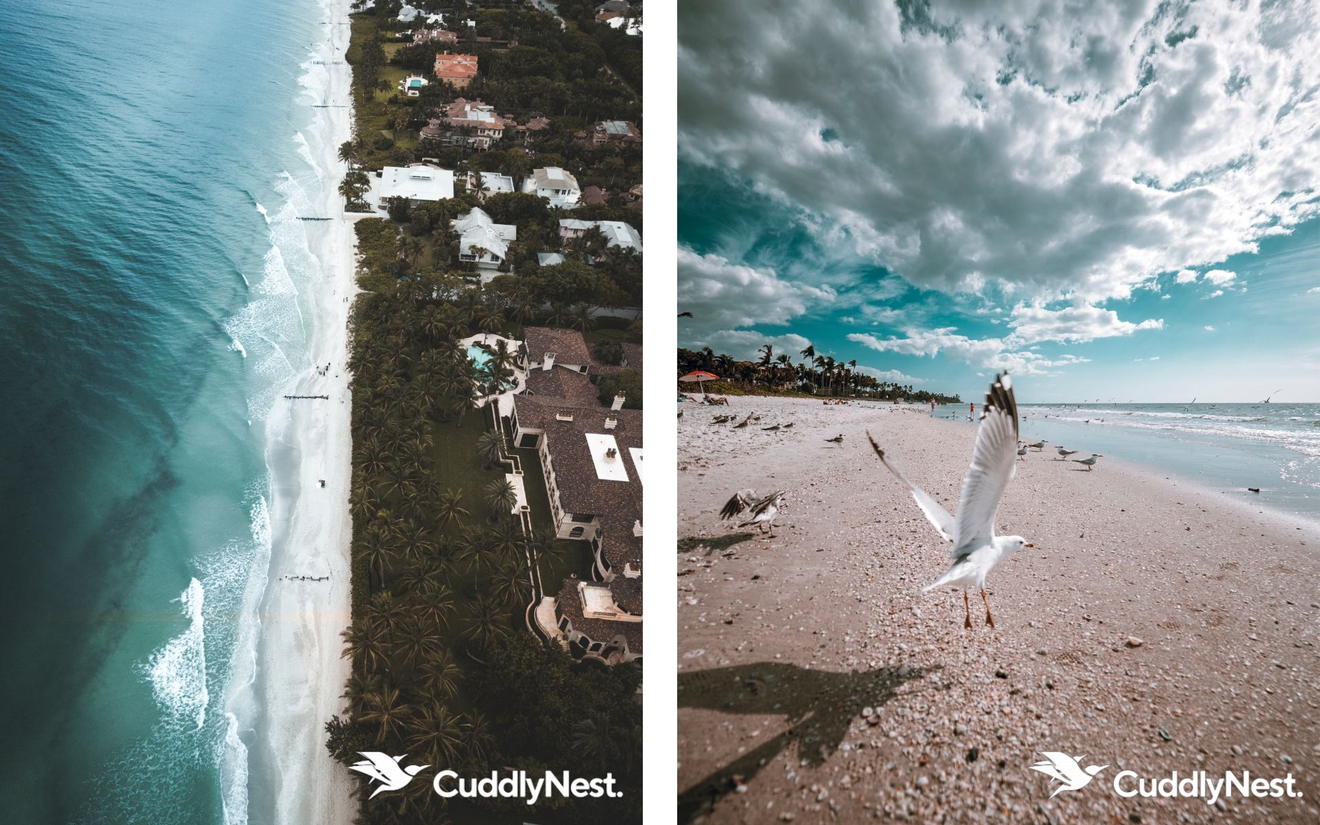 Naples Florida Vaction Homes CuddlyNest Beach Houses Holidays Rentals Condos