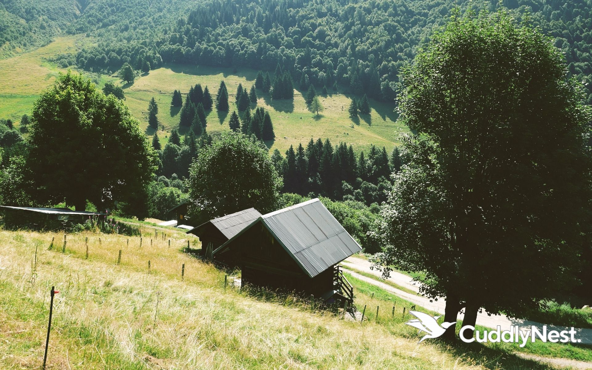 Tour de France Cuddlynest Travel Tips Guides French Alps July 2019