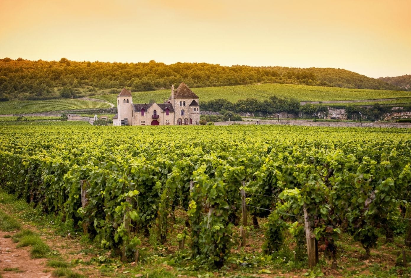 train travel in europe burgundy france