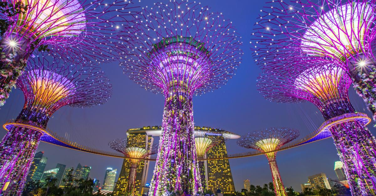 singapore tree garden
