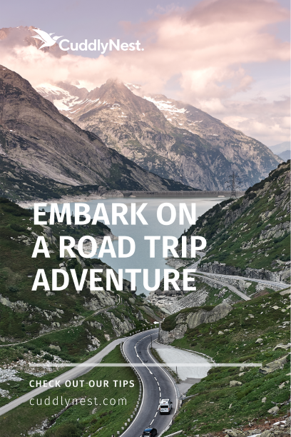 embark on a road trip