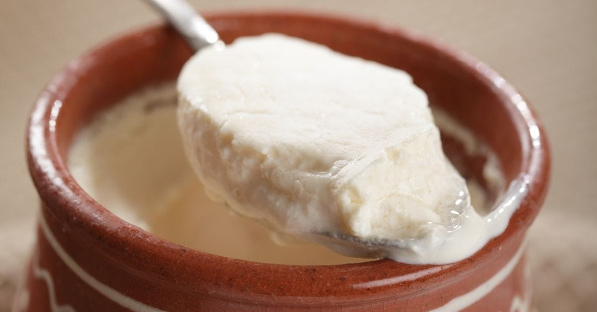 A spoon of baked milk, a traditional Russian drink.
