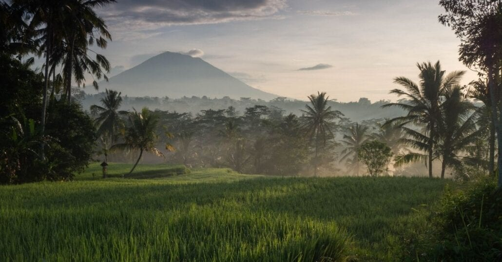 Bali's rice paddies and verdant nature with the Mount Batur on the backdrop.