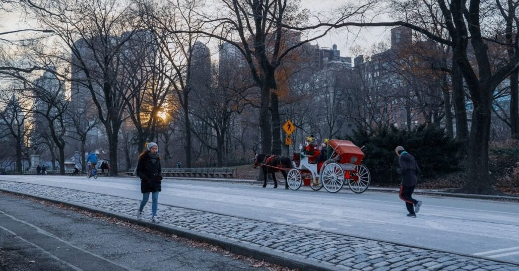 Enjoy free outdoor events in NYC's Central Park