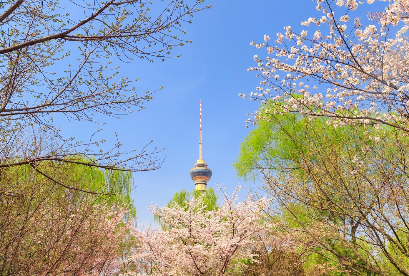 Beijing Yuyuantan Park spring scenery
