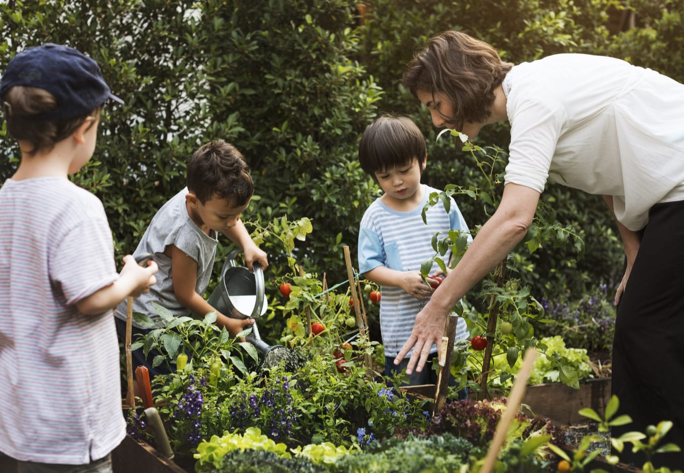 A young teacher at a vegetable garden with three small children.