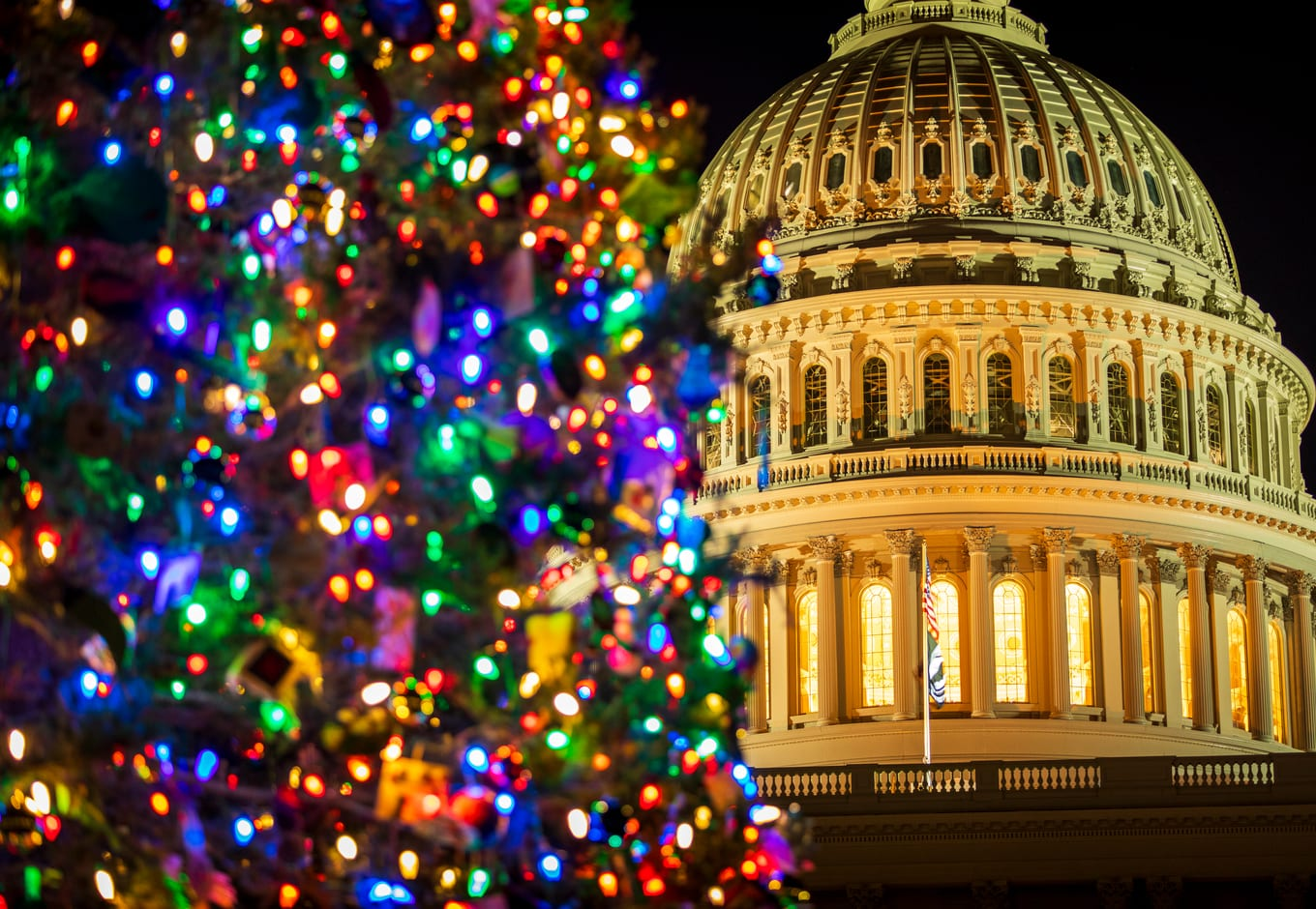 The United States Christmas Tree shining bright in front of the US Capitol Building in Washington, DC.