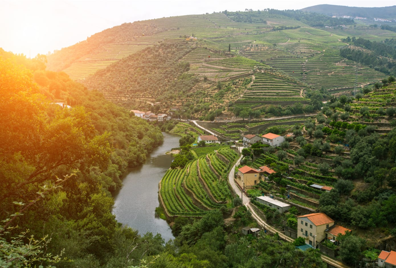 Aerial view of the Douro wine region, in Portugal