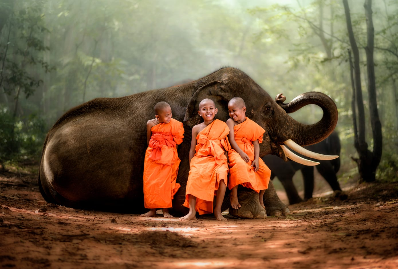 Three child Thai monks dressed in an orange robe, smiling while posing in front of an elephant.