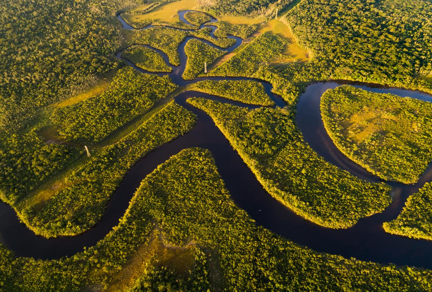 Aerial view of the Amazon Rainforest, in Brazil.