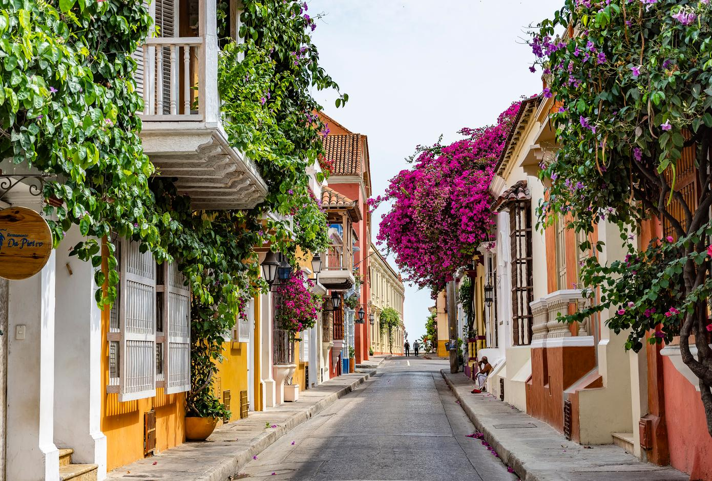 A street lined with colorful houses decorated with cascading bougainvilleas in Cartagena, Colombia.