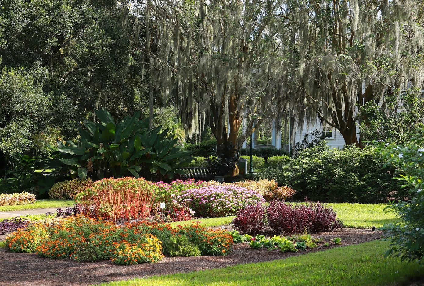 The Harry P. Leu Gardens, in Orlando, Florida.