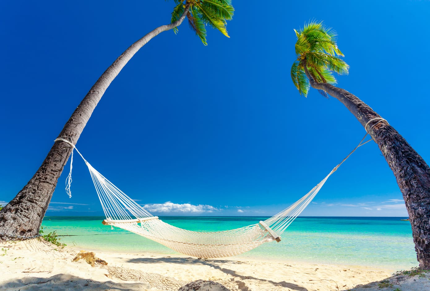 Empty hammock in the shade of palm trees on Fiji Islands