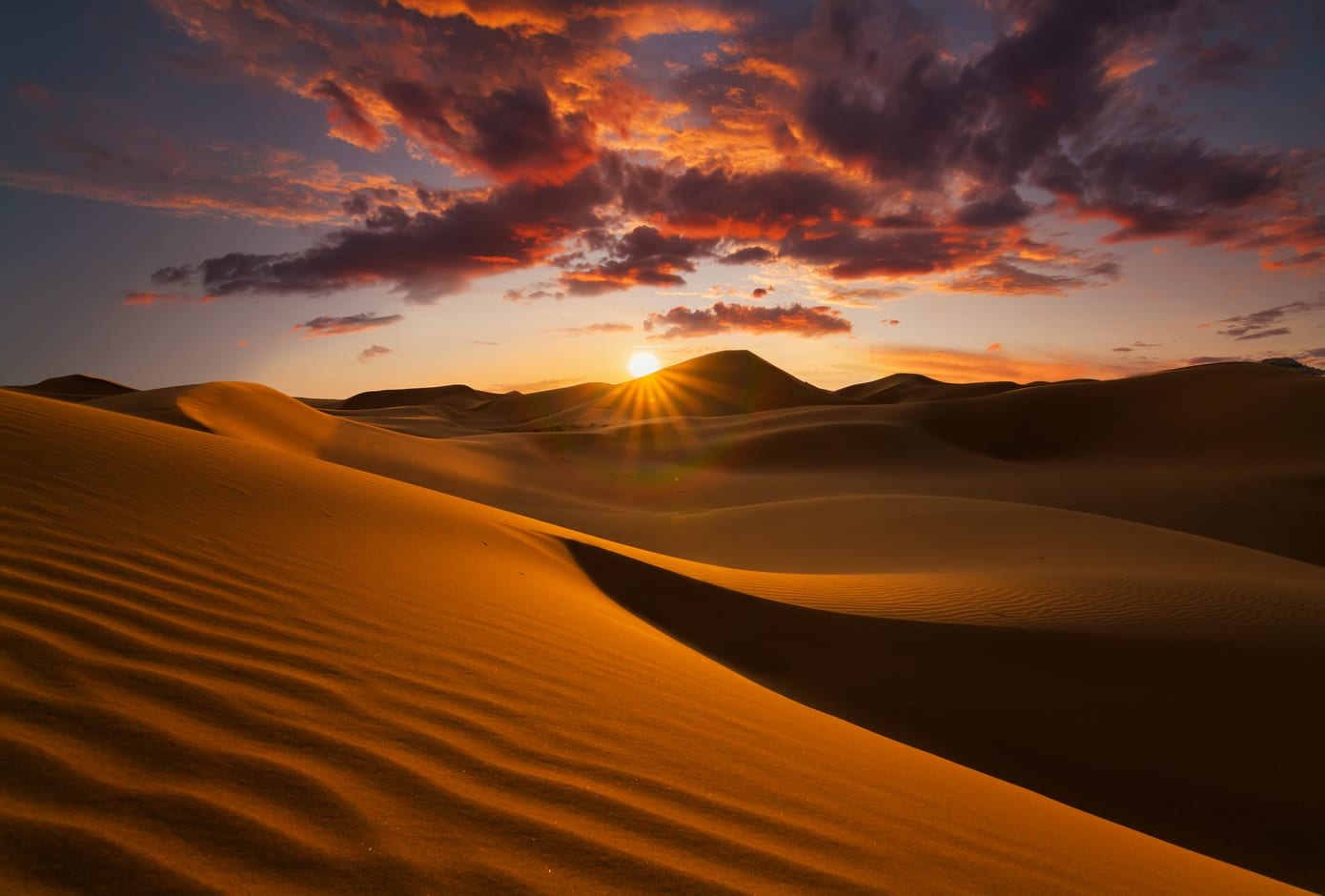 A stunning pink sunset at the Sahara desert.