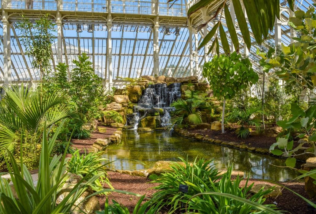 Kew Gardens, Temperate House, the largest Victorian glasshouse in the world